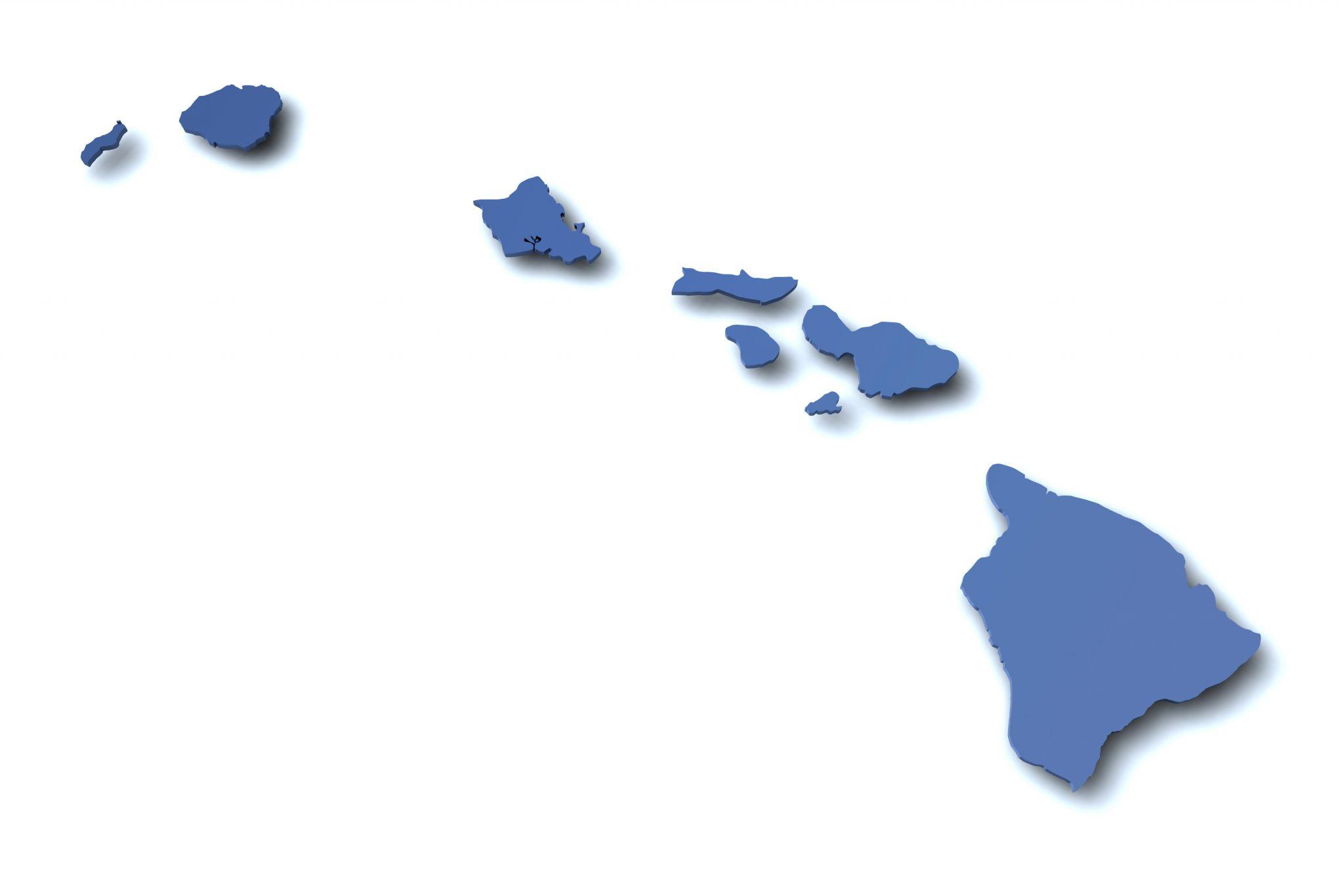 ISRAELS & NEUMAN, PLC- Hawaii Securities Attorneys
